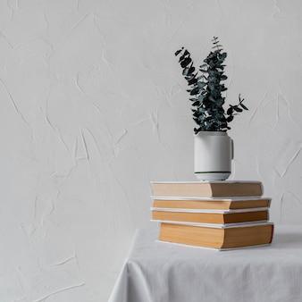 Układ ze stosem książek i rośliną