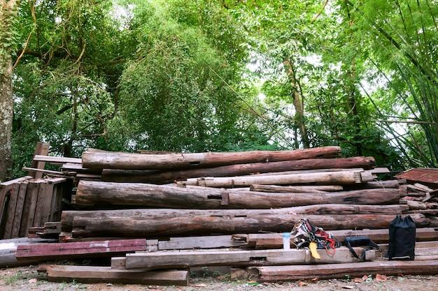 Układaj grube kłody w oczekiwaniu na transport do tartaku. krajobraz z dużym stosem drewna w letnim lesie