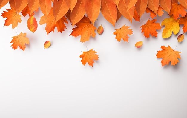 Układanie jesiennych liści z miejscem na kopię