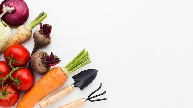Układanie różnych warzyw na płasko