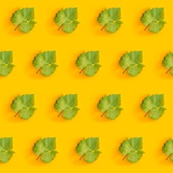 Ukośny wzór z zielonych liści winogron