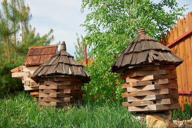 Ule z pszczołami w pasiece wczesną wiosną