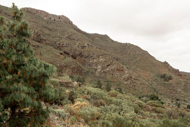 Ulga górska z pochmurnego nieba