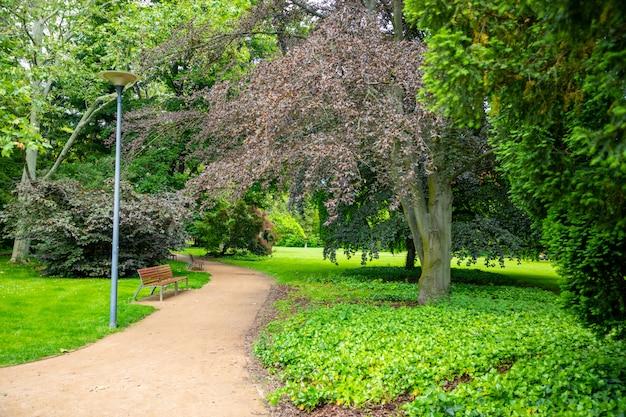 Ulica kolonada w czeskim mieście podebrady ozdobiona z jednej strony pięknym parkiem, podiebrady, czechy