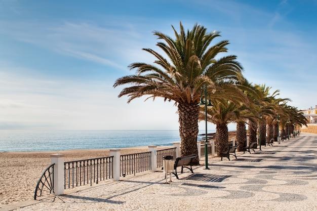 Ulica na plaży z palmami