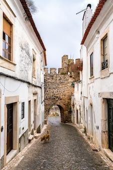 Ulica na starym mieście estremoz w alentejo, portugalia