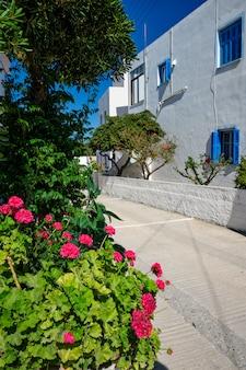Ulica w mieście grecja z kwiatami.