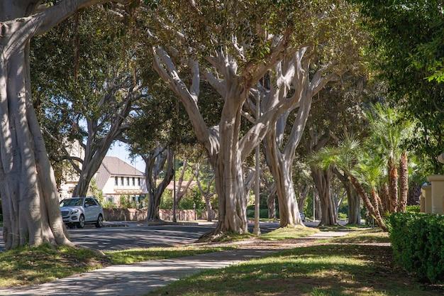 Ulice i domy w zamożnych dzielnicach dużych miast ameryki