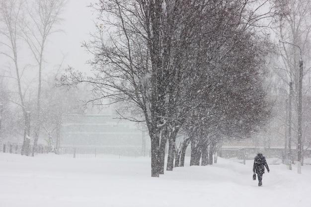 Ulice miasta z drzewami podczas obfitych opadów śniegu