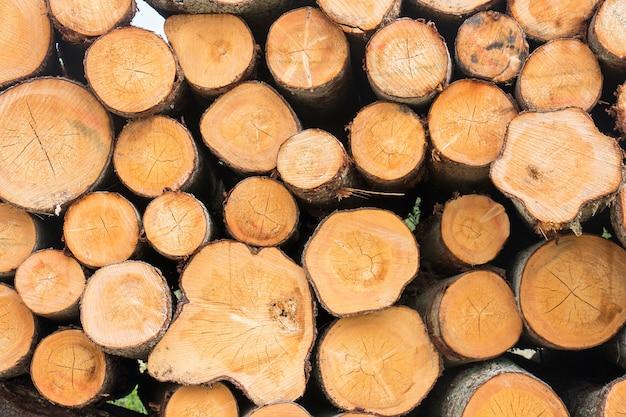 Ułożone kłody drewna z bliska