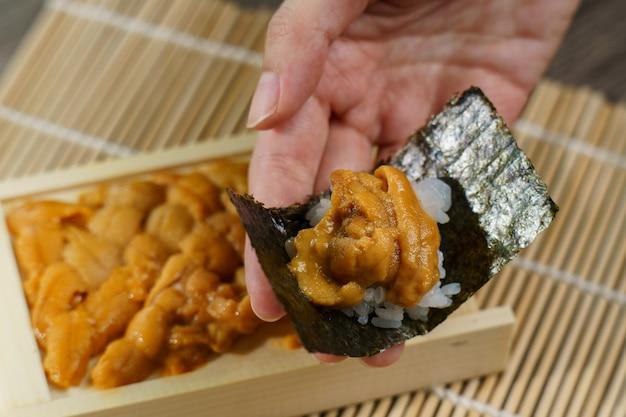 Uni japoński jeżowca z ryżem i wodorostami w ręku.