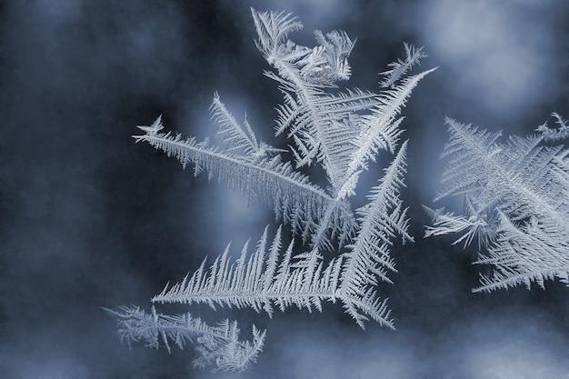 Unikalne wzory lodu na szybie okna
