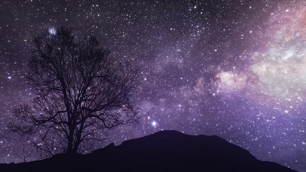 Upływ czasu gwiaździstej nocy z cieniem drzewa