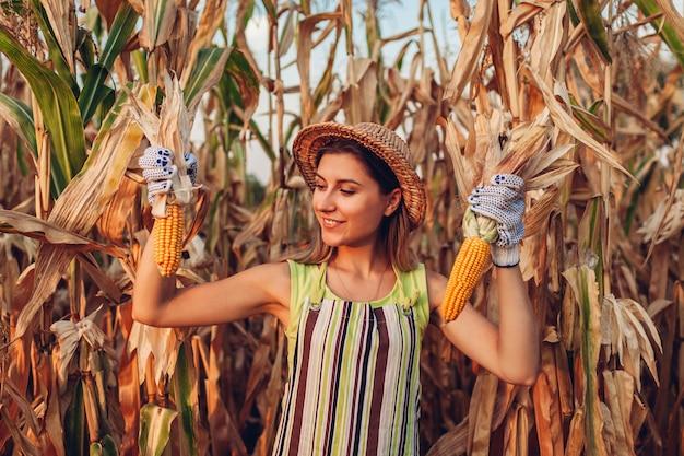 Uprawa kukurydzy młoda kobieta rolnik zbieranie zbiorów kukurydzy. pracownik trzyma jesień kaczany kukurydzy. rolnictwo i ogrodnictwo