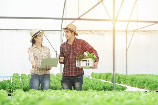 Uprawiać ziemię, ogrodnictwo, rolnictwo, zbierać i ludzie pojęć, - młoda azjatykcia para z pudełkiem zielony dębu i pastylki komputeru osobistego komputer przy rolny szklarniany hydroponic organicznie.