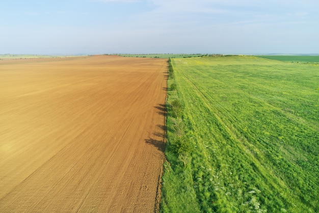 Uprawiana łąka i zielona łąka