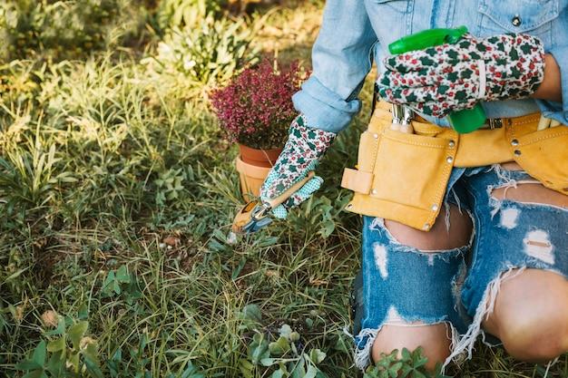 Uprawy kobieta pracuje w ogrodzie