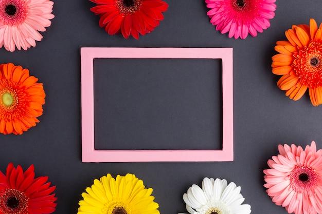 Urocza kompozycja z kwiatami stokrotki gerbera