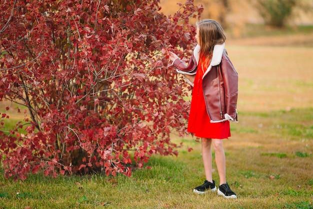 Urocza mała dziewczynka przy pięknym jesień dniem outdoors