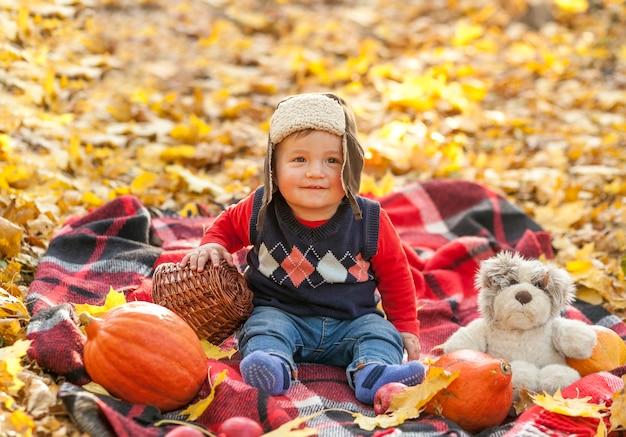 Urocze dziecko z futrzaną czapką na kocu piknikowym