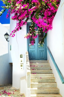 Urocze kwiatowe uliczki na słonecznej wyspie mykonos. cyklady, grecja