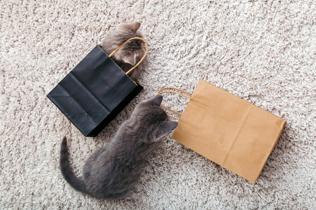 Urocze małe pręgowane kociaki chowają się w papierowych torbach na zakupy w domu na dywanie. kot wygląda z papierowej torby. prezent na walentynki kociak w opakowaniu niespodzianka. koncepcja zakupu sprzedaży. widok z góry.