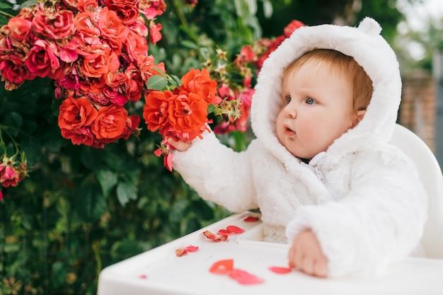 Uroczy chłopczyk w kostiumie niedźwiedzia siedzi na wysokim krześle na świeżym powietrzu w krzakach z kwiatami.
