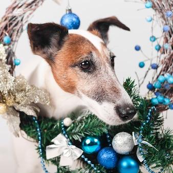 Uroczy pies z świątecznych dekoracji