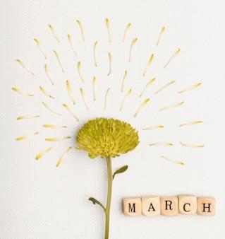 Uroczysty kwiat na 8 marca