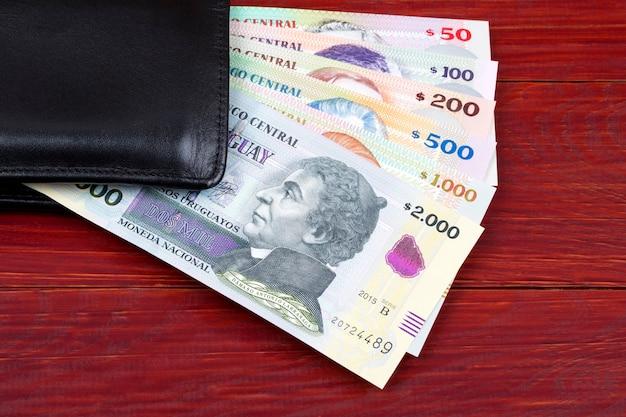 Urugwajskie pieniądze