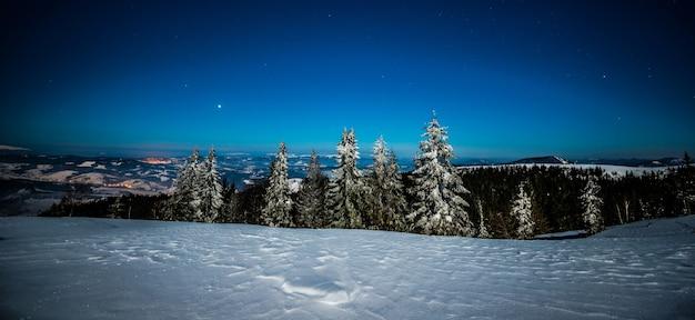 Urzekający magiczny krajobraz ośnieżonych wysokich jodeł rosnących wśród zasp na wzgórzach na tle błękitnego, rozgwieżdżonego nocnego nieba. koncepcja pięknego lasu w nocy. copyspace