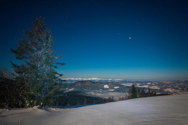 Urzekający magiczny krajobraz śnieżnej wysokiej jodły