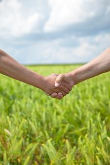 Uścisk dłoni dwóch rolników na polu pszenicy.