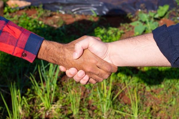 Uścisk dłoni między rolnikiem a klientem, ogród warzywny