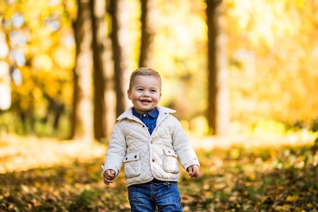 Uśmiech ładny mały chłopiec stojący w pobliżu drzewa w lesie jesienią. chłopiec bawi się w jesień parku.