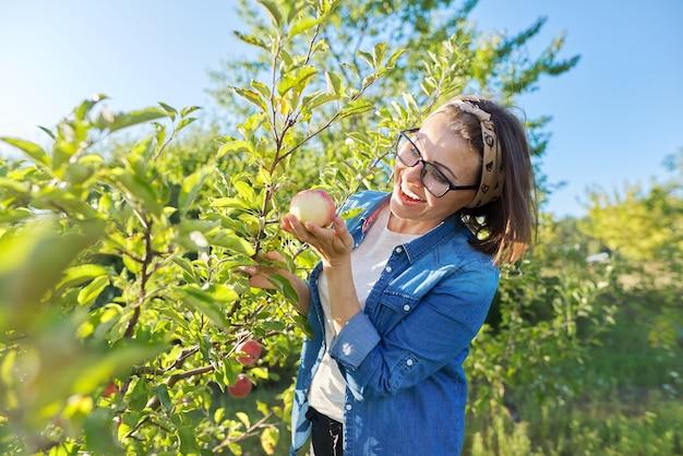 Uśmiechnięta kobieta ogrodniczka w pobliżu jabłoni z dojrzałymi czerwonymi jabłkami, trzyma jabłko w ręku, kopiuje przestrzeń. hobby i wypoczynek, ogród przydomowy uprawiający ekologiczną naturalną zdrową żywność, koncepcja ogrodnicza