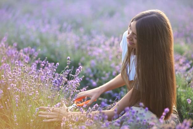 Uśmiechnięta kobieta zbierająca zbiory lawendy w polu