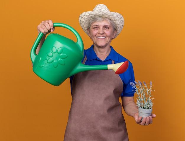 Uśmiechnięta starsza kobieta ogrodniczka w kapeluszu ogrodniczym, podlewająca kwiaty w doniczce z konewką