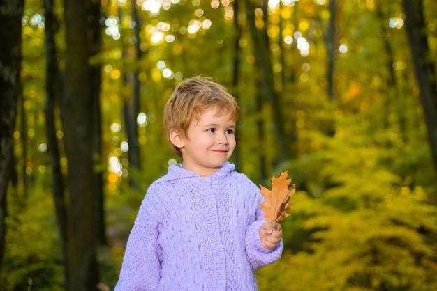 Uśmiechnięty dzieciak nad jesiennym naturalnym tłem mały blaying w parku mały słodki chłopiec w jesiennym parku