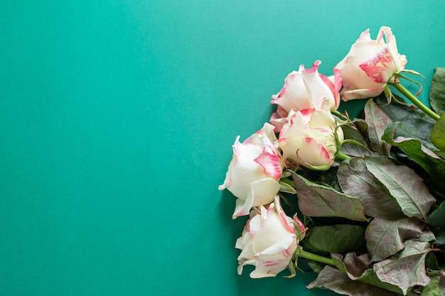 Ustaw bukiet białych i różowych róż na zielonym tle z copyspace