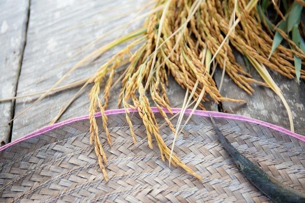 Uszy ryżu i sierp na drewnie.