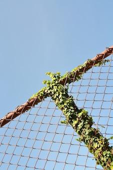 Utlenione balustrady z roślin zielonych