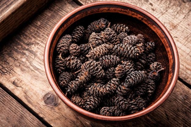 Uzdrawiające szyszki olchy