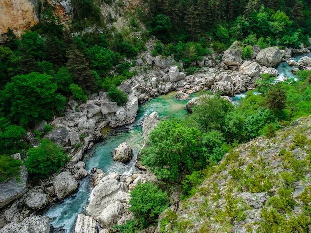 Verdon rzeka z białymi skałami i zieloną roślinnością, alpes de haute provence, francja
