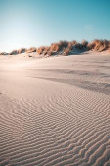 Vertical strzał pustynia pod jasnym niebieskim niebem chwytającym w oostkapelle, holandie