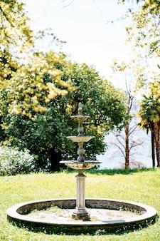 Vintage fontanna dla ptaków w ogrodzie. pusta miska fontanny na łące z trawą