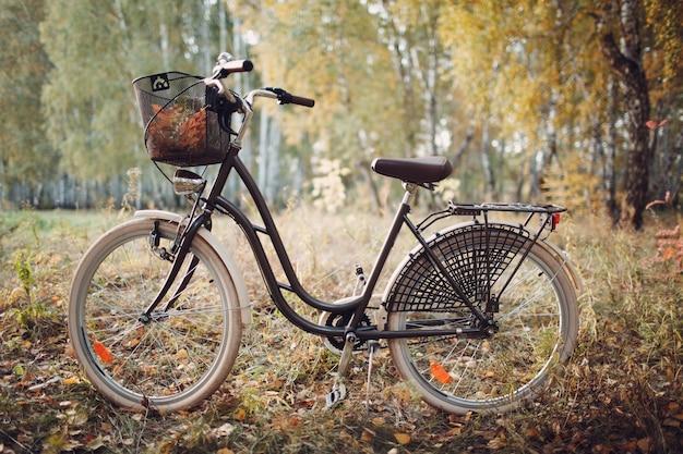 Vintage kobieta rower z koszem w parku jesień