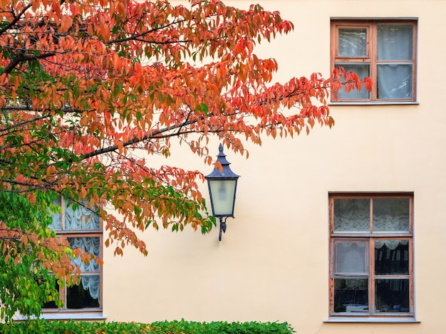 Vintage latarnia na ścianie z oknami jesienią. jesienny ogród.