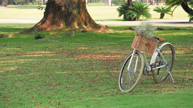 Vintage rower lub rower i brązowy drewniany kosz z przodu i małe białe kwiaty!