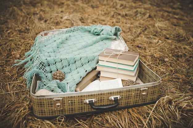 Vintage walizka ze starymi książkami i dzianinowym szalem na wyblakłej i uschniętej trawie